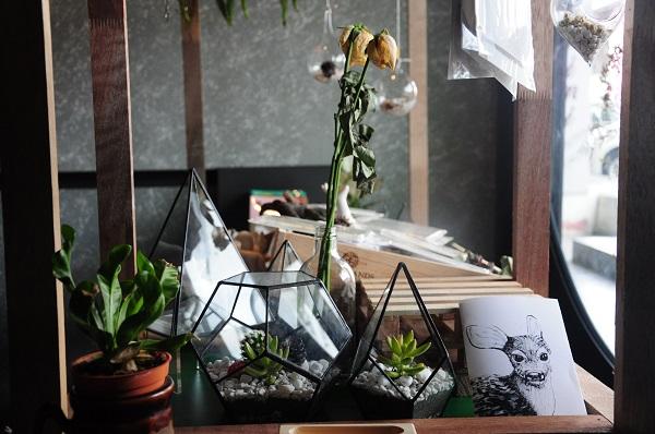 Flowers in the window 3